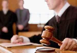 Представництво інтересів в судах, інших державних і місцевих органах влади
